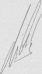 The signature of Patrick Vieira