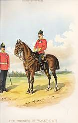 The Princess of Wales Own Yorkshire Regiment (19th Foot)�by Richard Simkin (P)