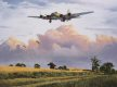 Our Gal Sal, a veteran of over a hundred ops, returning to base in the summer of 1944.  The peace of the  English country side is broken by the thunder of the mighty four engined bombers and keen observers will spot the rabbit scampering along the country lane as the Forts of the Bloody 100th circle the Airbase. With one engine feathered and showing signs of the gauntlet of Flak and fighters she has had to come through, the crew know they are only moments away from the safety of home.