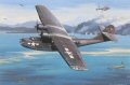 On February 15, 1944, flying his Navy PBY Catalina on air-sea rescue duty, Lt. Nathan Gordon received an urgent call. Several 345th BG B25s were down following a major attack on Kavieng, and crews were in the water just offshore. Under intense gunfi......