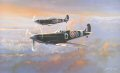 One summers evening, Douglas Bader (flying Mk V Spitfire without cannons) and Johnnie Johnson (flying the Mk VB Spitfire with cannons) of the Tangmere Wing, share a few moments of peaceful flying whilst on patrol over the English Channel. ......