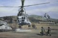 Throughout the crisis in Bosnia helicopters of various nations provided logistic support to the ground forces, especially in the times when movement along dangerous roads was impossible.  Here Puma Helicopters of the French detachment drop into a fo......