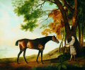 GIDT8465GS.  Shark With His Trainer Price in a River Landscape attributed to George Stubbs