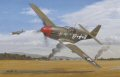 Col. James A (Goody) Goodson's Mustang. Goodson's first victory, an Fw-190, on 23rd June 1943, was followed by many more. He became proficient in shooting down Luftwaffe planes, and soon 15 had found they could not outfight him.  In the meant......