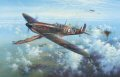 Simon Atack has recreated an action flown by Pilot Officer Bob Doe during a fierce battle over the south coast, near the Isle of Wight on 18th August, 1940. Flying a Mk I Spitfire of No 234 Squadron, Boe Doe is seen bringing down an Me109 High over ......