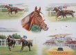 This montage shows Trigger winning the Goodwood Cup in 1995, 1997 and 1998.