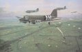 Douglas C47 Dakotas fly into the landing and drop zone at Renkum Heath, September 17th 1944.......