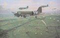 Douglas C47 Dakotas fly into the landing and drop zone at Renkum Heath, September 17th 1944. Douglas C47 Dakotas fly into the landing and drop zone at Renkum Heath, September 17th 1944.