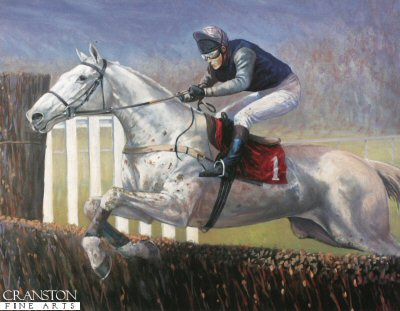 Desert Orchid by Mark Churms.
