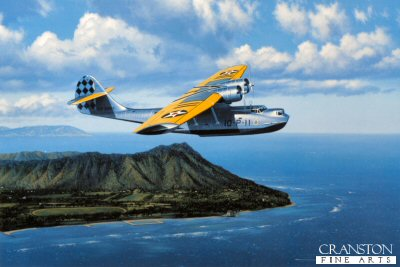 Wings Over Waikiki by Stan Stokes.