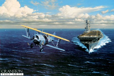 The Last Navy Biplane Fighter by Stan Stokes.