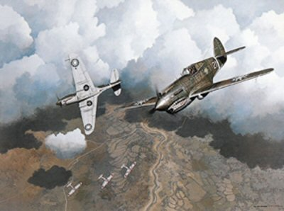 Pappys P-40 by Stan Stokes.