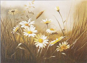 Ox Eye Daisies by Mary Dipnall
