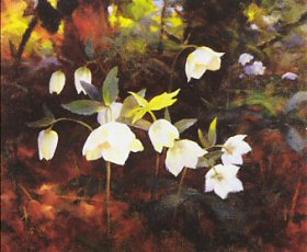 Sunlit Patchwork by Stanley Woolston