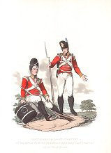 Grenadiers and Light Infantry of the 29th or Worcestershire Regiment of Infantry on Duty at Home