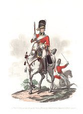 UN366. Private, 2nd or Royal North British Dragoons (Greys) by J C Stadler after Charles Hamilton Smith. <p>Modern reprint of the coloured lithograph vignettes by J C Stadler after Charles Hamilton Smith from Charles Hamilton Smiths Costumes of the Army of the British Empire, according to the last regulations 1812, published by Colnaghi & Co. 1812-1815, showing the British uniform of 1812 during the Napoleonic war.  Only 800 have been reprinted in 2002. <b><p>Open edition print. <p> Image size 9 inches x 11 inches (23cm x 28cm)