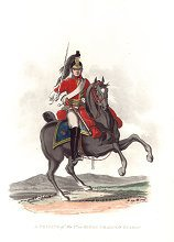 UN367.  Private, 1st or Kings Dragoons Guards by J C Stadler after Charles Hamilton Smith. <p>Modern reprint of the coloured lithograph vignettes by J C Stadler after Charles Hamilton Smith from Charles Hamilton Smiths Costumes of the Army of the British Empire, according to the last regulations 1812, published by Colnaghi & Co. 1812-1815, showing the British uniform of 1812 during the Napoleonic war.  Only 800 have been reprinted in 2002.  <b><p>Open edition print. <p> Image size 9 inches x 11 inches (23cm x 28cm)